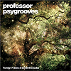 Professor Psygrooves