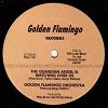 Golden Flamingo Orchestra