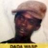 Dada Wasp