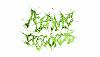 Alamo Records 21.05.20 Radio Episode