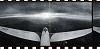 RASSVET RECORDS - Boris Deart Special 24.12.19 Radio Episode