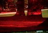 Colours - Transcendental Trips 08.04.19 Radio Episode