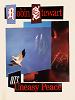 Bokeh Versions w/ Robin Stewart 12.02.20 Radio Episode